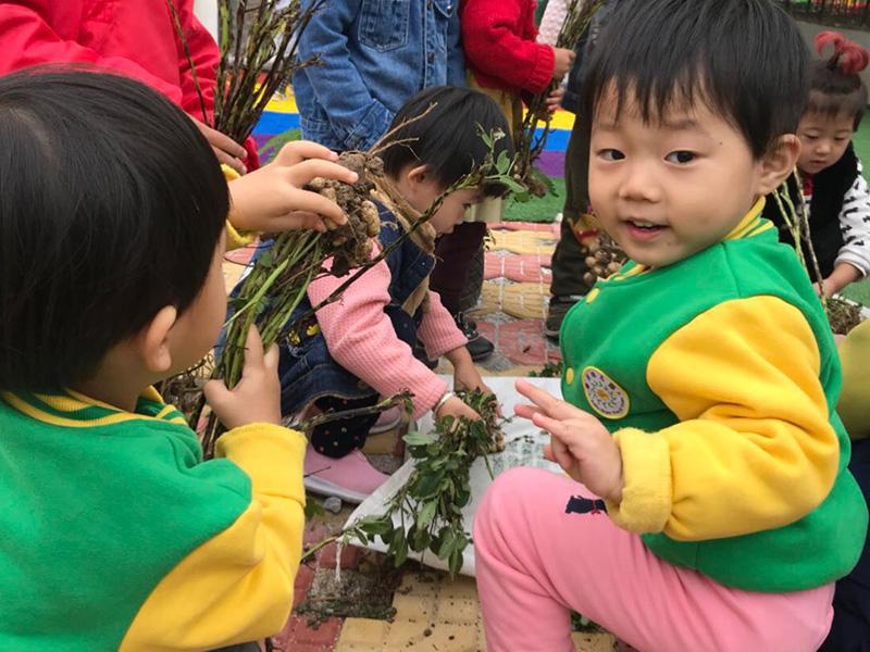 安丘雙語幼兒園團隊活動