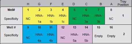 HNA SSP分型.png