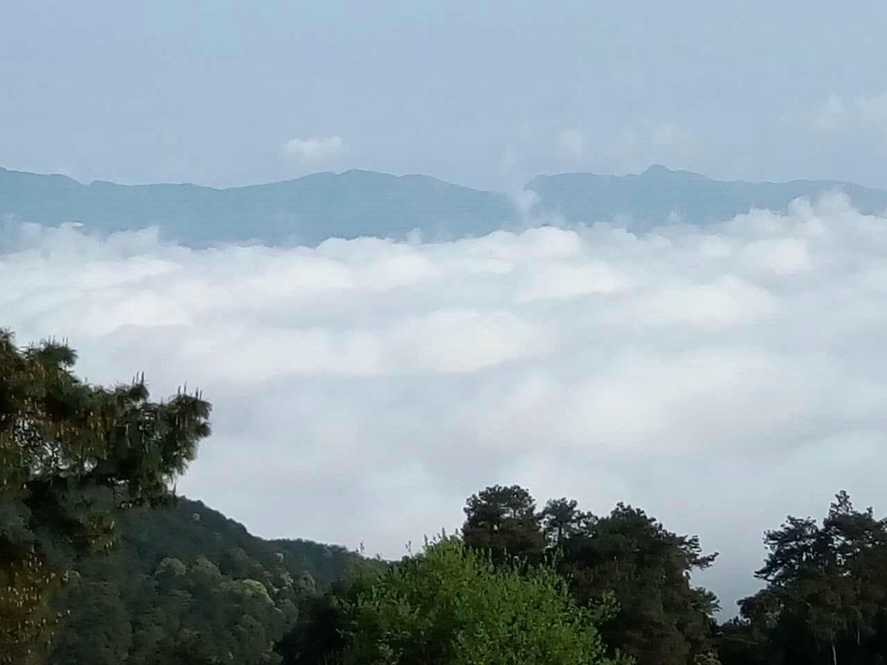 缙云山景区环境
