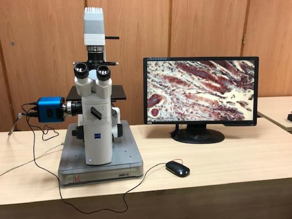 倒置显微镜主动隔振台.png