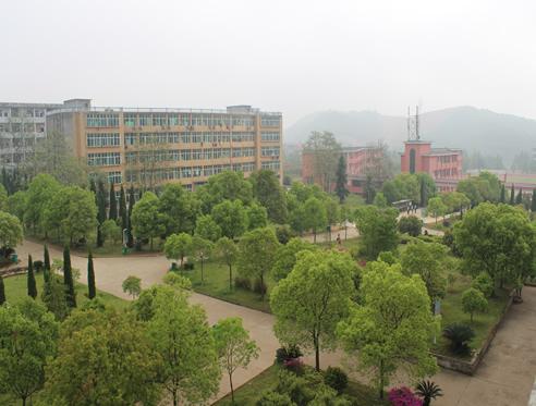 美丽校园2