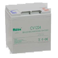 CV1224