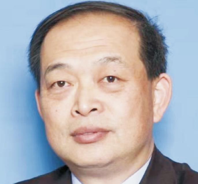 副会长 — 李康