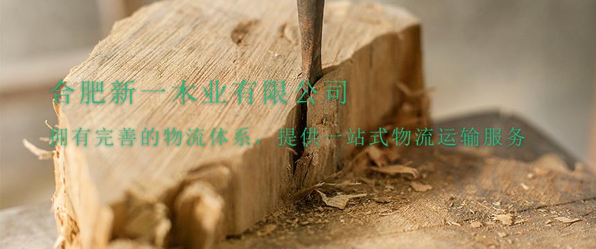 合肥新一木业有限公司