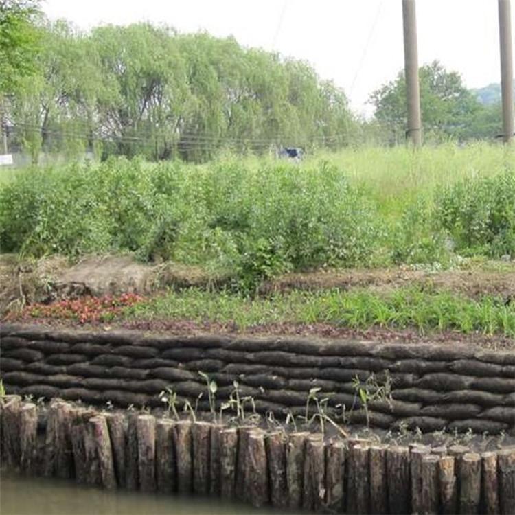 生態袋用于護坡工程