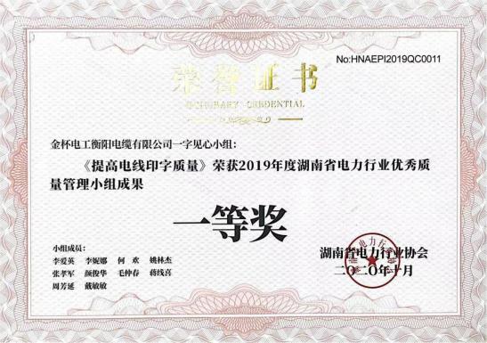 喜讯丨乐动体育注册乐动体育投注网QC小组荣获湖南省电力行业优秀质量管理小组
