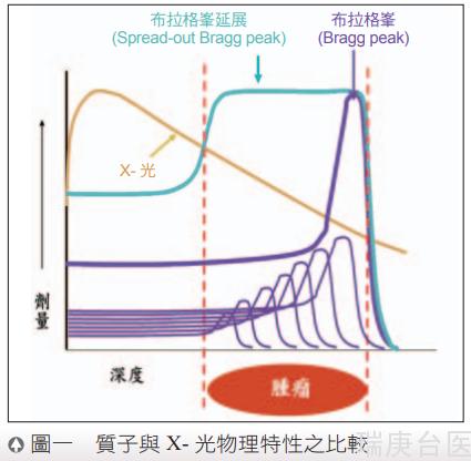 臺灣質子暨放射治療中心 | 放射治療與流程介紹